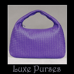 bottega-purple-hobo.jpg